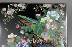 Antique Japanese 19th Century Cloisonne Enamel Hinged Box with Birds Very Fine