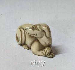 Japanese okimono netsuk e of a dog late Edo period very fine