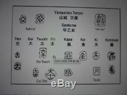 LARGE FINE CLASSIC SAOTOME TEMPO IRON JAPANESE TSUBA SWORD SAMURAI 300 years